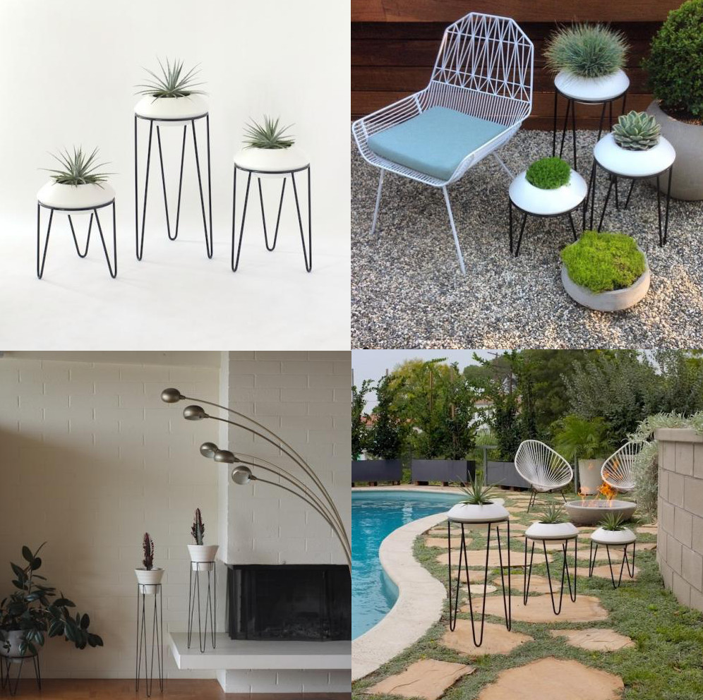 7 interior design finds potted leggy