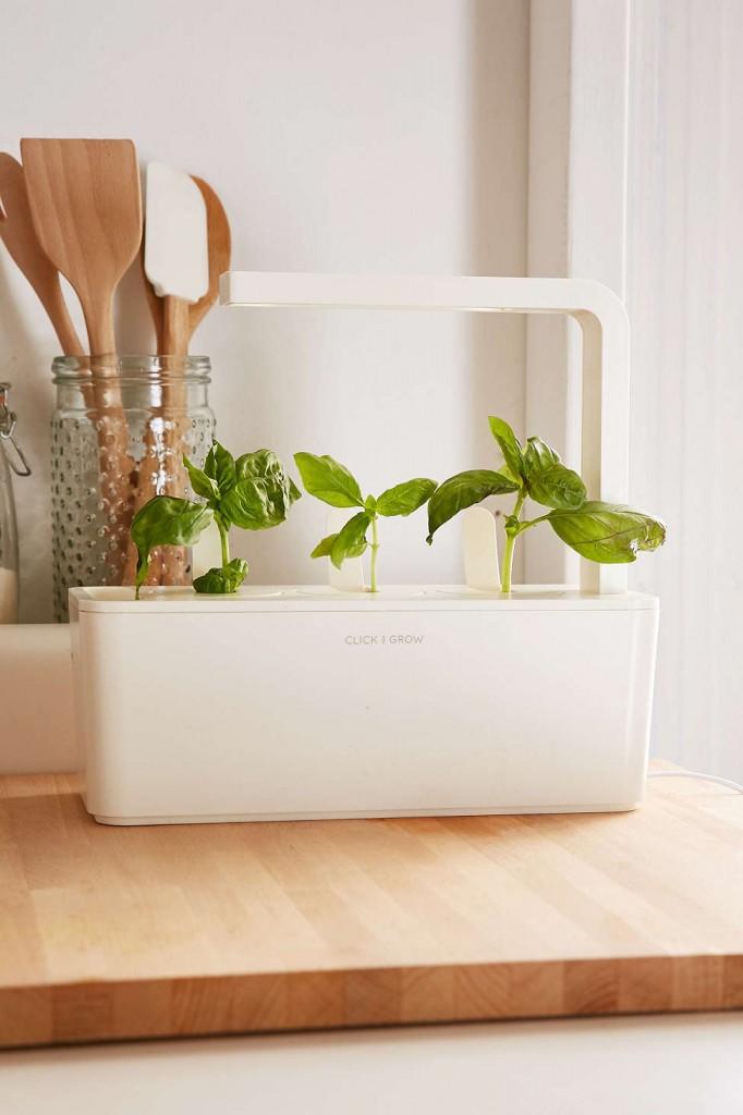 UO Kitchen Finds on TheDailyMonarch.com #monarch #kitchen #garden #herbs